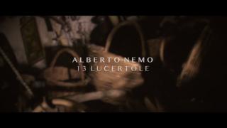 13 Lucertole Il Primo Video di Alberto Nemo
